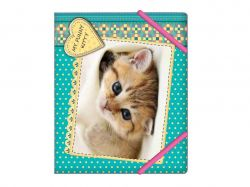 Папка на гумках В5 My funny kitty «Кошеня» CF3164204 ТМCFS