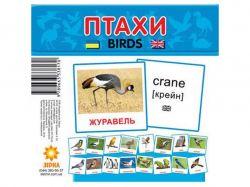 Картки міні Птахи (110х110 мм) (укр) 286288 ТМРАНОК