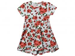 Сукня фулікра ПЛ-157-4Д Троянди р.116 ТМКлим