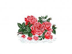Схема для вишивки Aida №16 Аромат троянди КТК-5031 ТМКаролінка Азовя