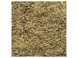 Трава Грястица (в мішку) 20 кг ТМСЕМЕНА УКРАИНЫ