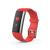 Фитнес устройства ERGO Fit Band HR BP F010 - Фитнес трекер (Black)