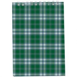 Блокнот Buromax spiral top, А6, 48sheets, square, green (BM.2480-04)