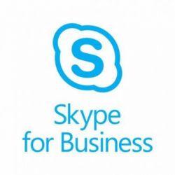 Офисное приложение Microsoft Phone System 1 Month(s) Corporate (4260988e)