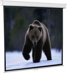 Проекционный экран Redleaf настенный 171*128 SGM-4302