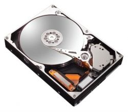 HDD IDE   60GB Maxtor DiamondMax Plus 9 7200rpm 2MB (6Y060L0) гар. 12 мес.