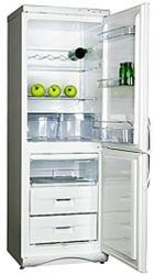 Холодильник SNAIGE RF 310.1803 A - Картинка 2