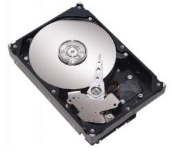 Seagate Pipeline HD 500GB (ST3500414CS)